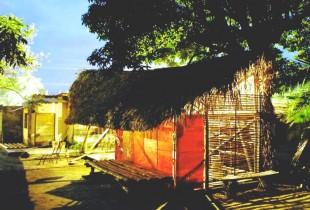 Proyecto Palomino gana premio de la Unesco